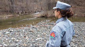 carabinieri forestali controlli fiume irno