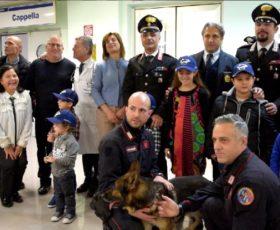 """L'Unità cinofila dei carabinieri insieme ai bimbi del reparto pediatrico del """"Landolfi"""" di Solofra"""