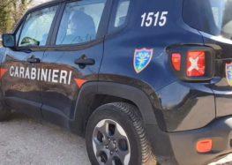 Contrada e Forino, bruciano materiali pericolosi, denunciate due persone dai carabinieri