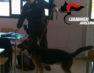 "Montoro, ""studenti pusher"". Hashish nascosto a scuola, segnalati due studenti"