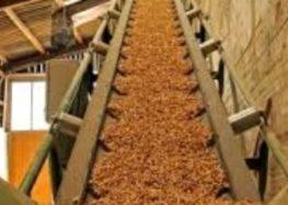 Biomassa a Baronissi, vince il No grazie al Tar