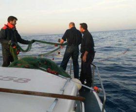 Guardia Costiera sequesta pescato