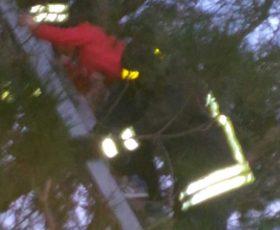 Bimbo sale su un albero di otto metri per recuperare il pallone, salvato dai caschi rossi